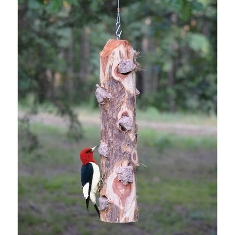 Suet Log (uses suet logs)  Birds prefer over wire suet cages! Suet is especially important in the winter, birds need the extra calories found in suet to survive the bitter cold.