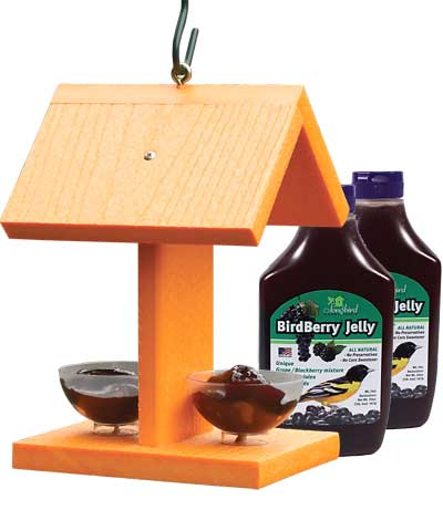 Oriole Feeder  (make sure it hold jelly)  Orioles are high in the trees.  To draw them down where you are able to see them, put grape jelly, nectar, or orange halves out…  Also they like the color orange.