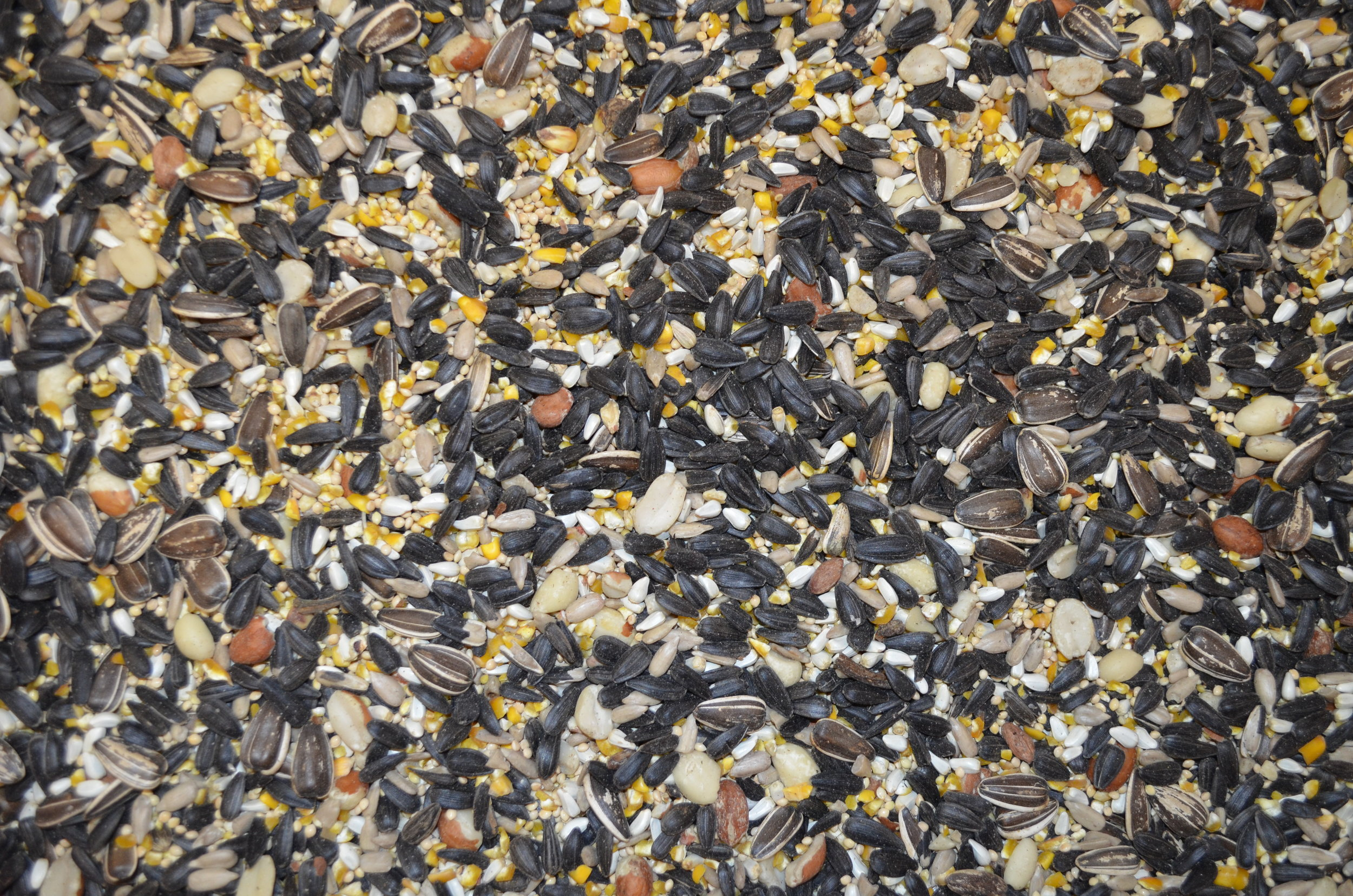 Connection Special  Sunflower Seeds, Non-GMO Cracked Corn, White Proso Millet, Peanuts Hearts, Hulled Sunflowers, Safflower  OUR MOST POPULAR MIX ! LOVED BY MOST BIRDS !