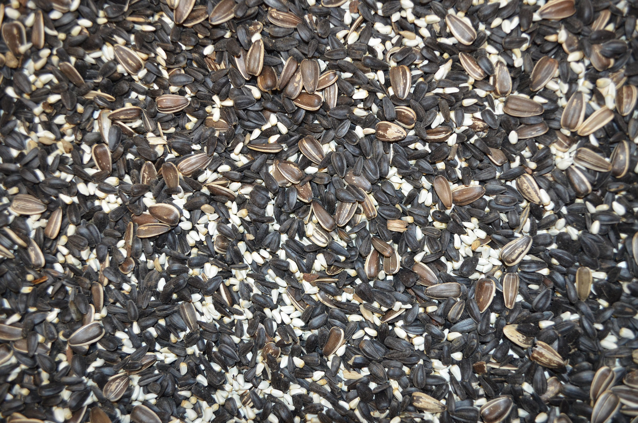 Starling Stopper  Sunflower Seeds, Safflower Seed  STARLINGS DON'T LIKE SEEDS IN THE SHELL. LOVED BY CARDINALS & JAYS.