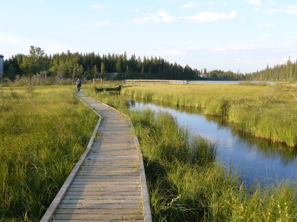 Beaver Boardwalk