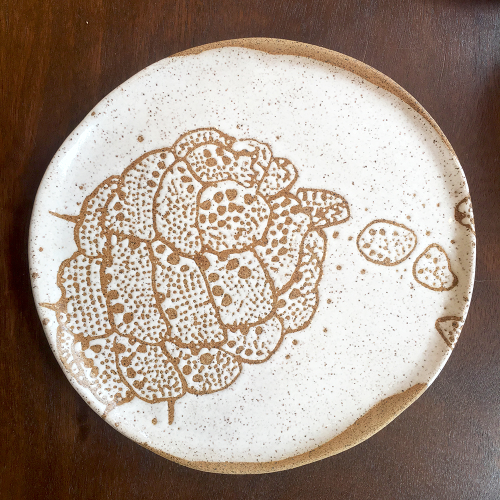 Dinner plate with colony in white on speckle clay