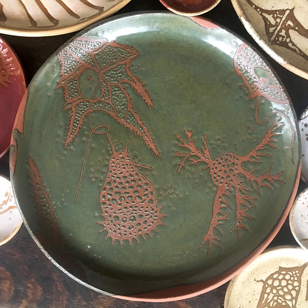 Dinoflagellate and radiolarian charger in moss on red clay
