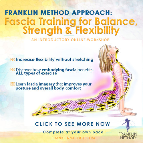 Fascia Training - Introductory Online Workshop$213