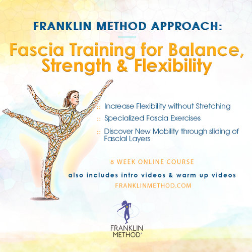 Fascia Training - 8 Week Online Course$449