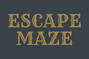 EscapeMaze1.png
