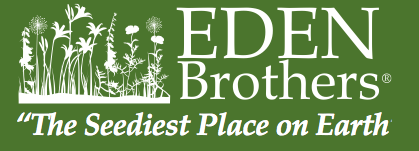 Eden-Brothers.png