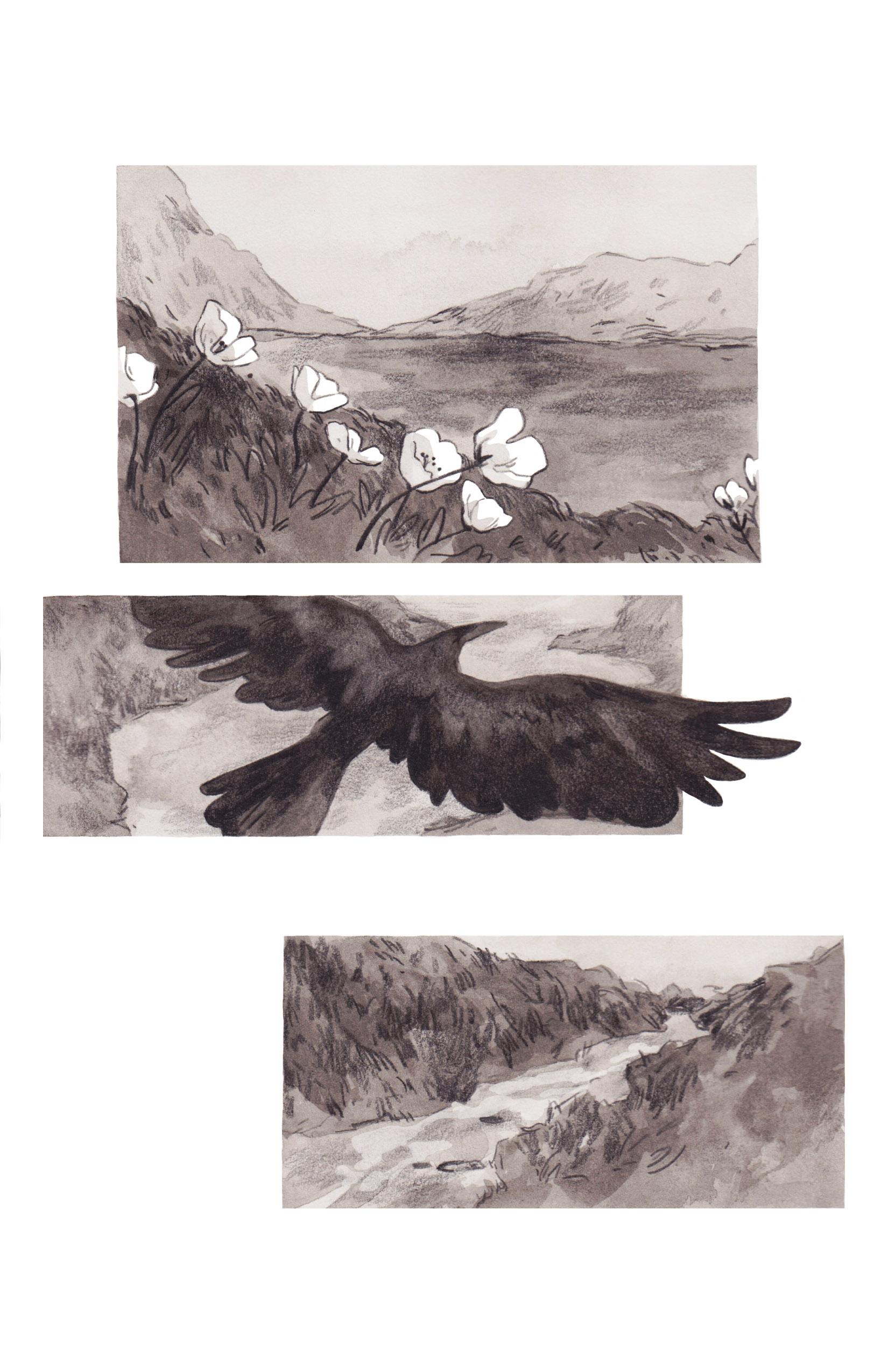 Hrafn Saga Page 1