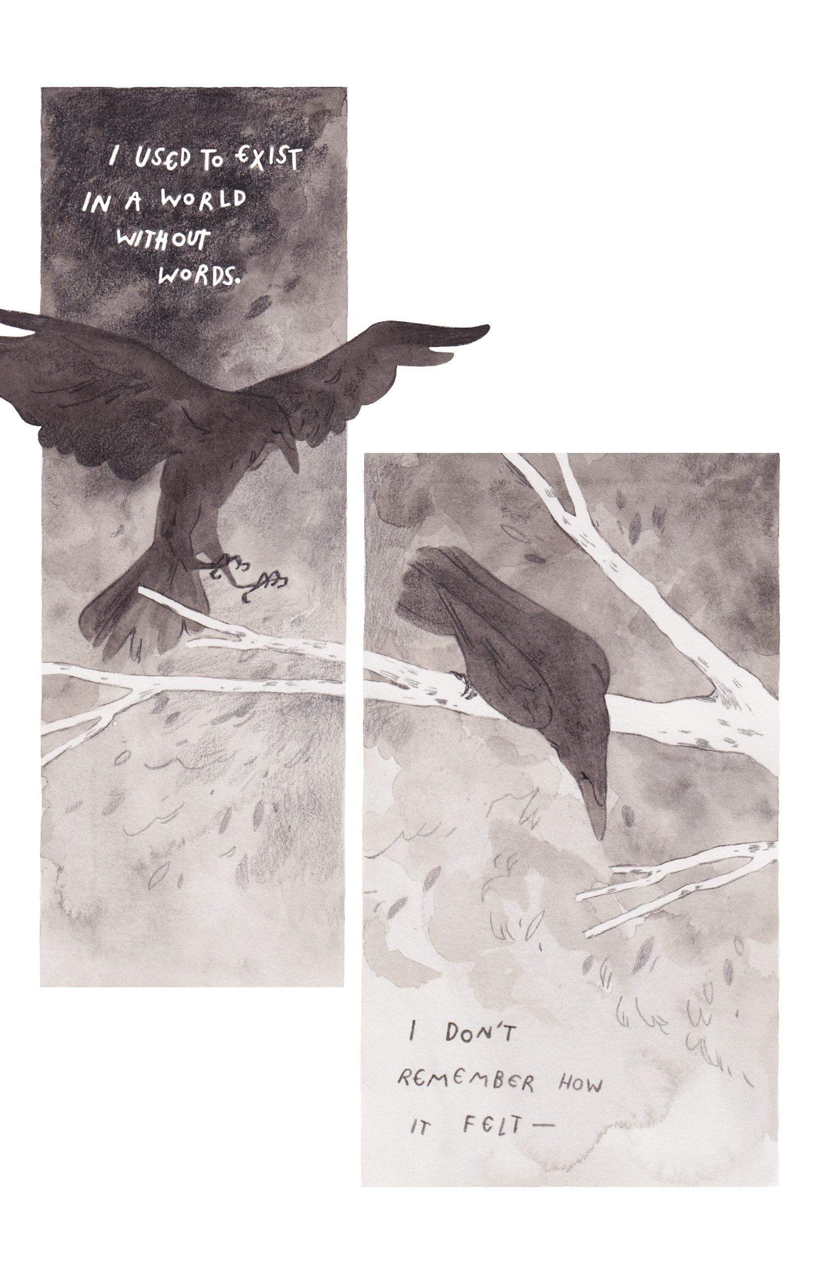 Hrafn Saga Page 2