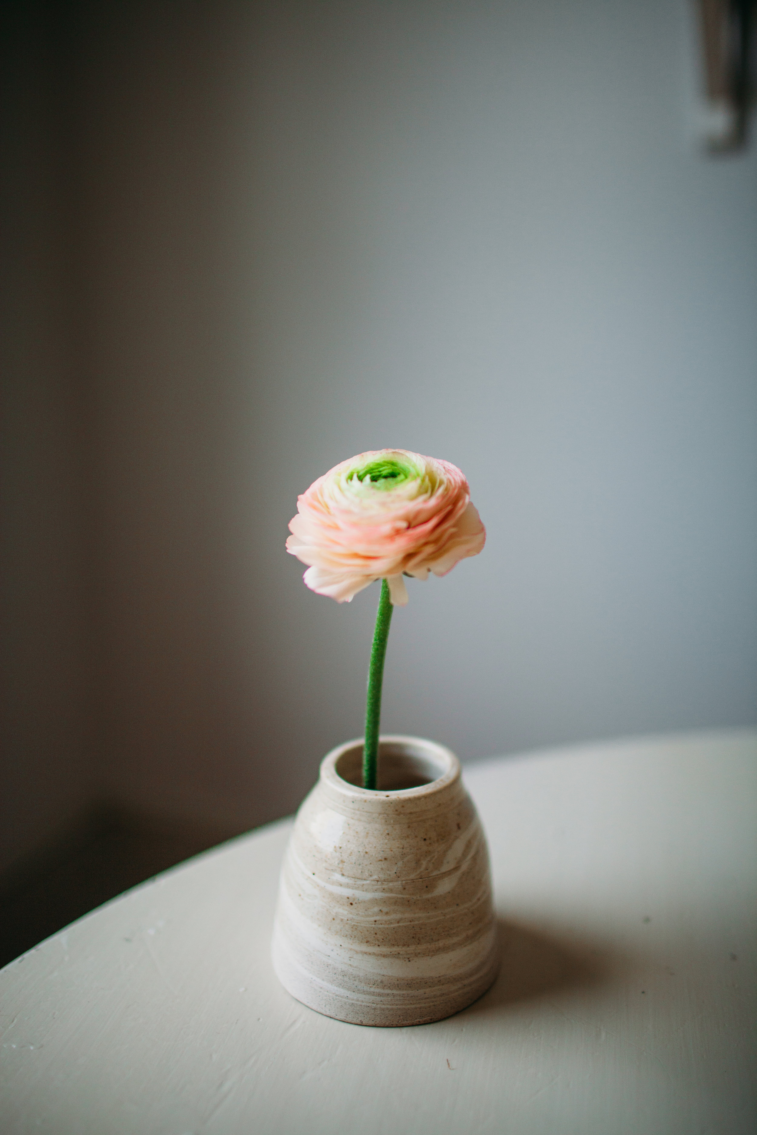 florals-march16-77.jpg