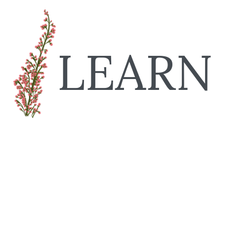 LEARN_LOGO FLOWER.png