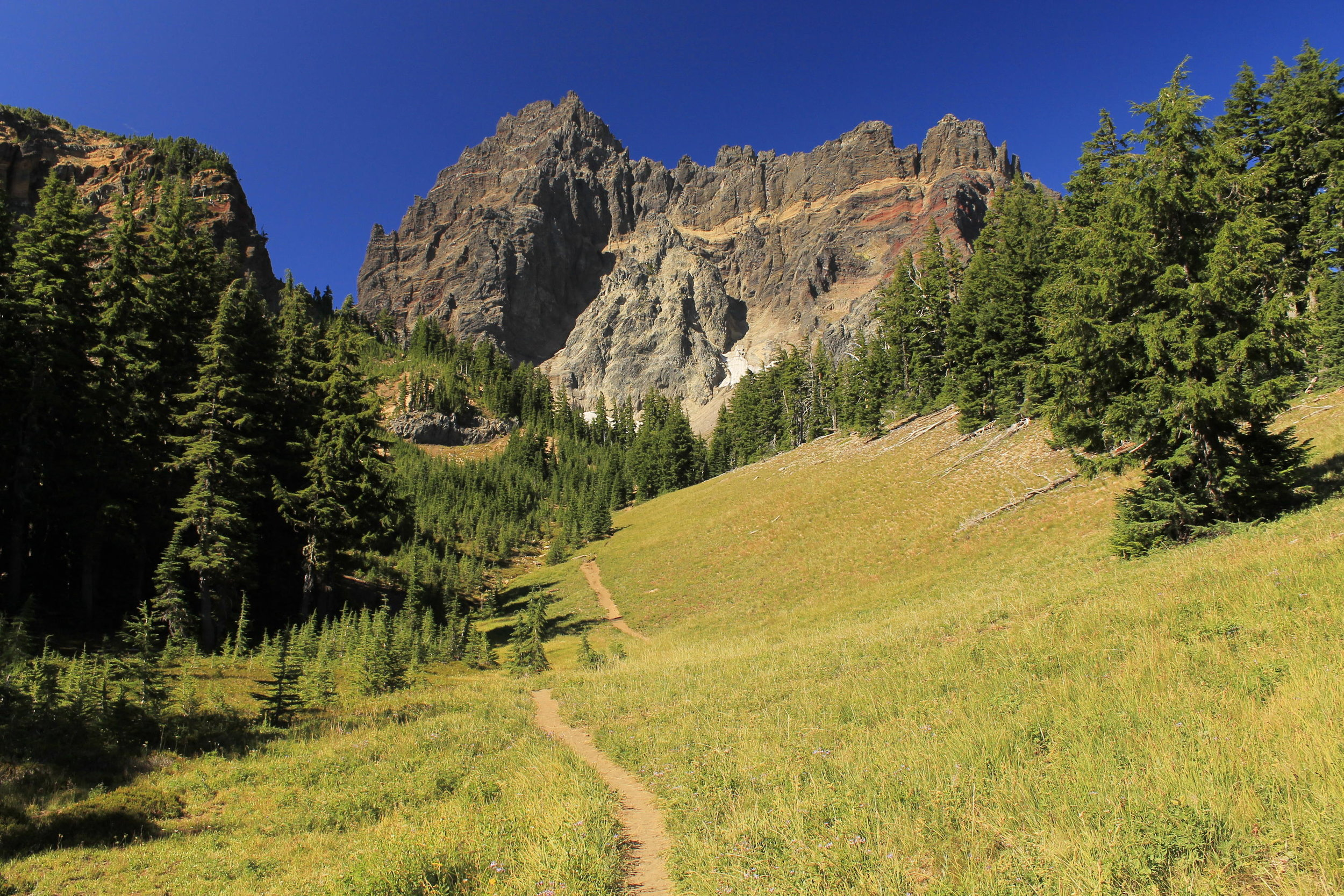 Hiking into Canyon Creek Meadows.