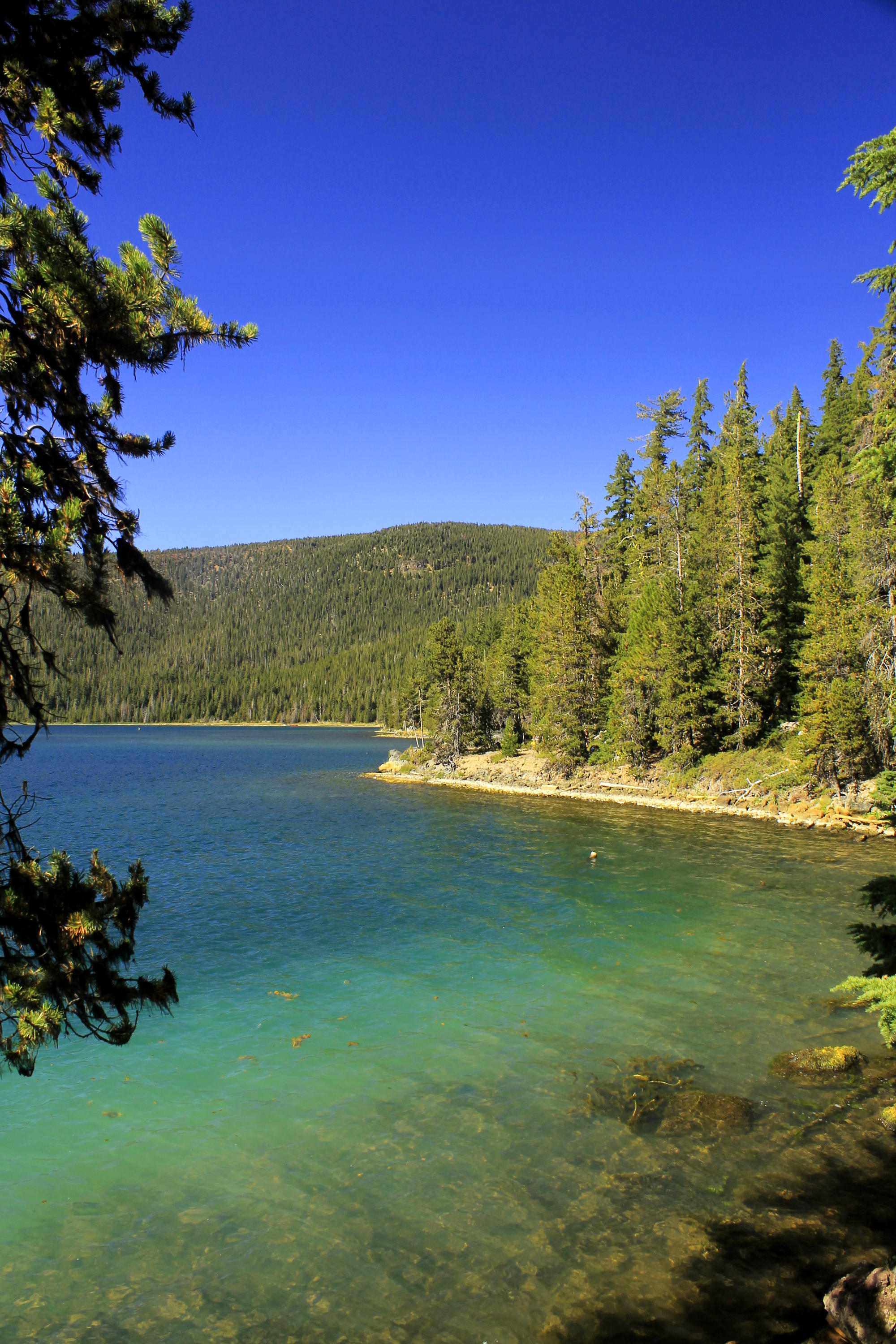 Paulina Lake, Newberry Crater National Volcanic Monument