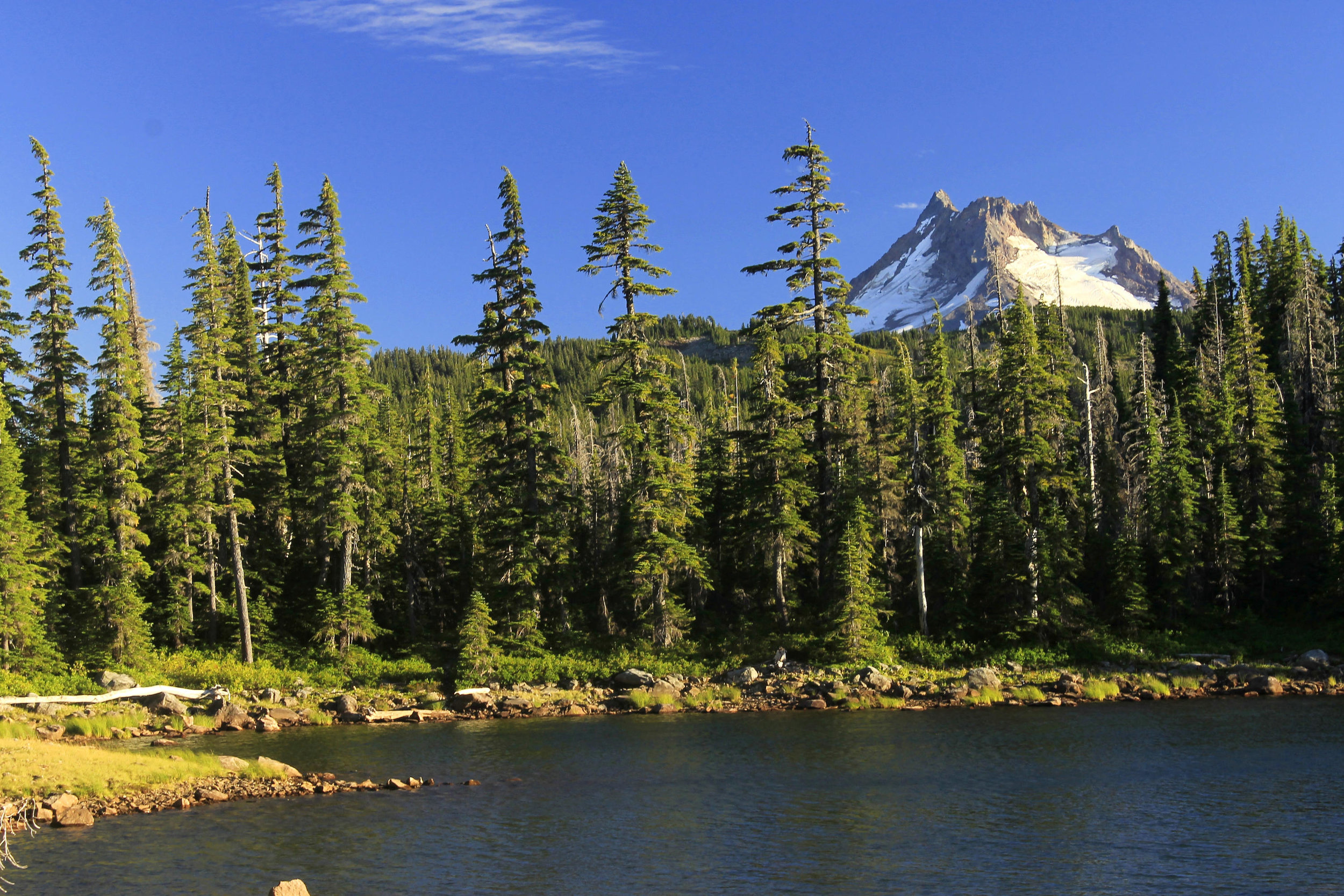 Mount Jefferson looms over a tarn deep in the Olallie backcountry.