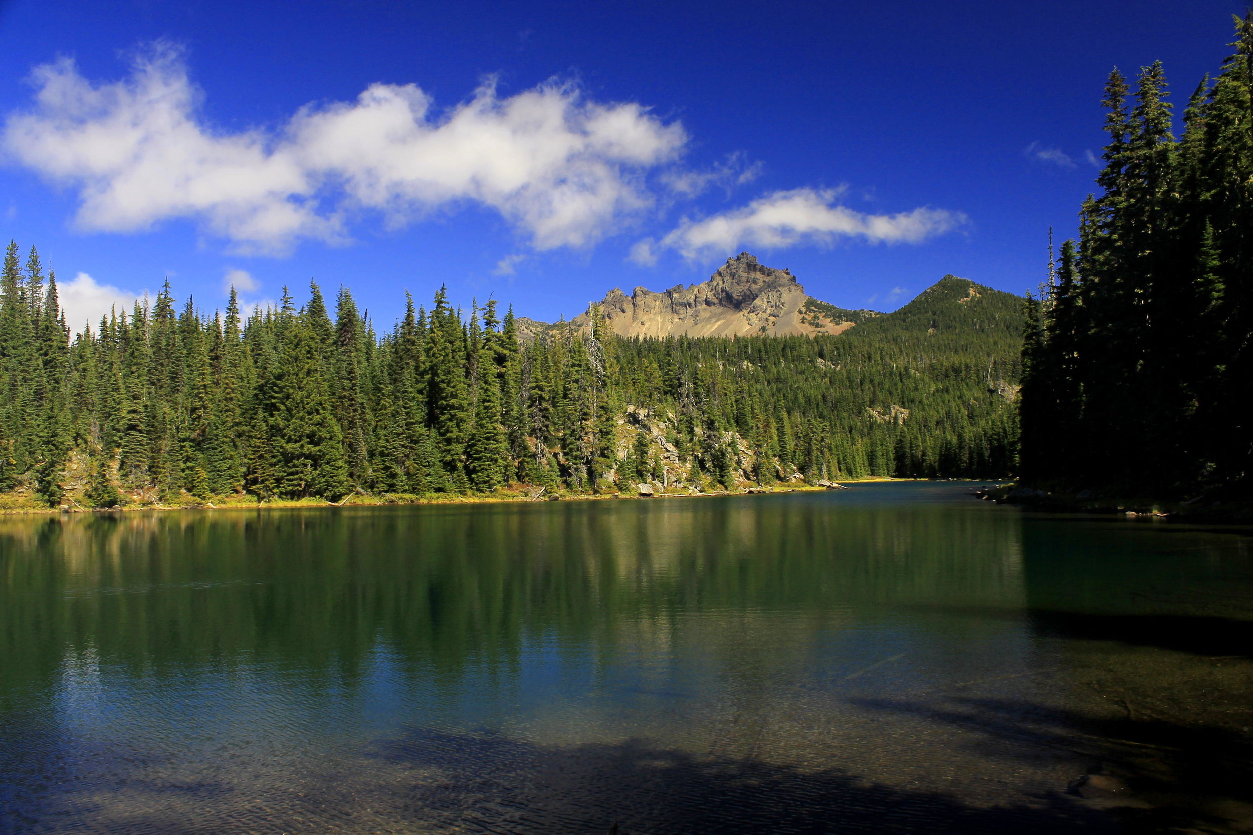 Three-Fingered Jack and Lower Berley Lake. The lake is only a short distance off the trail to Santiam Lake but is not particularly easy to find.