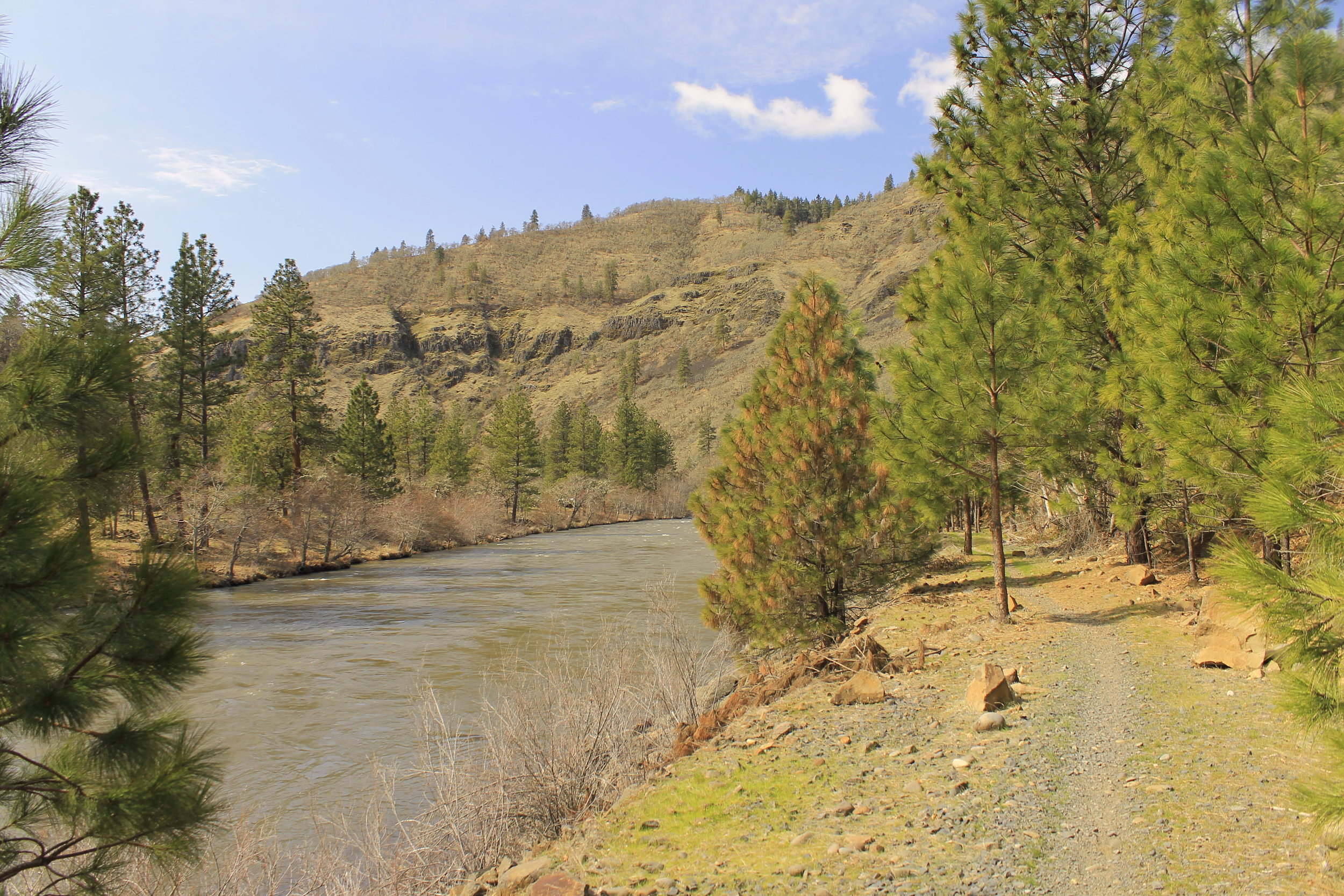 Hiking down the Klickitat River Trail