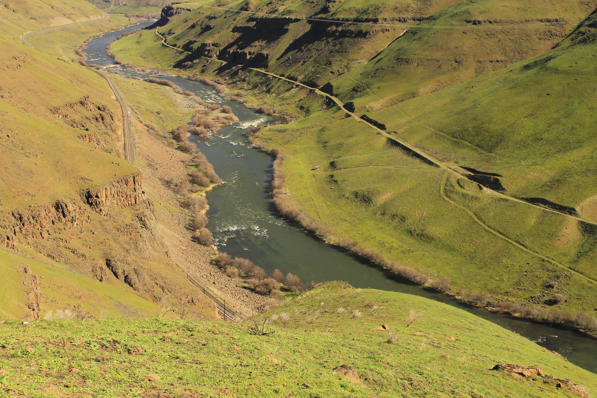 The Deschutes River from Free Bridge Road