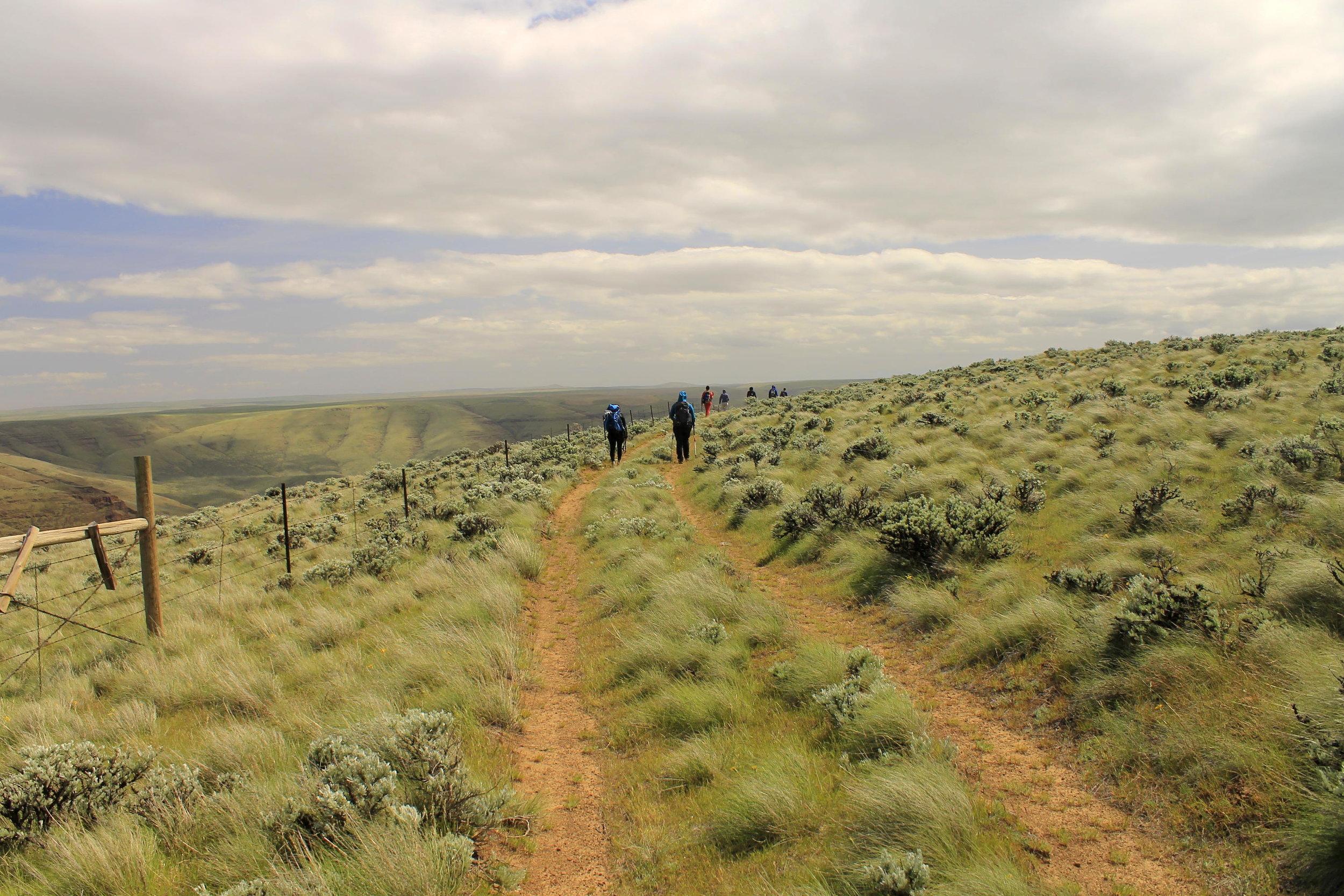 Wandering the windswept slopes...