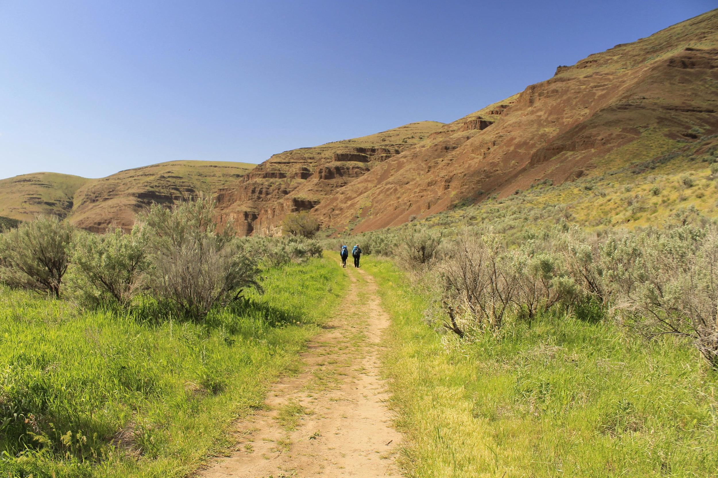 Hiking back Cottonwood Canyon