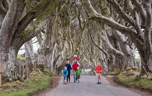 26066_Family+day+out+at+the+Dark+Hedges.jpg