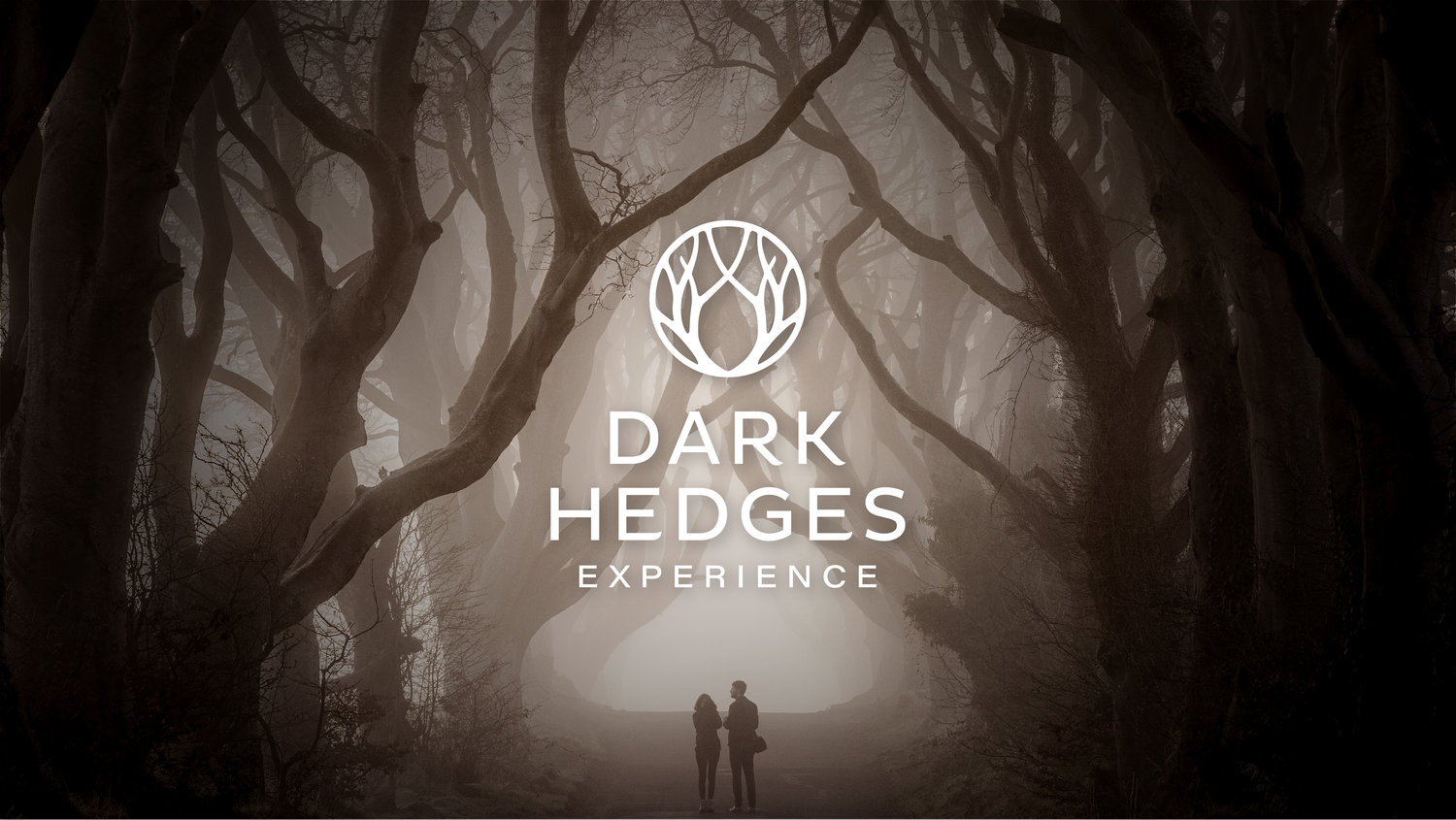 Dark_Hedges__Home+Page+with+Brand+-+v01-01.jpg
