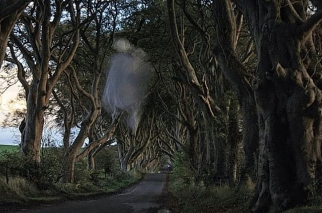 Hear the stories about the Grey Lady Ghost on a tour lead by the Dark Hedges Experience expert StoryGuides.  Book your tour today     www.darkhedgesexperience.com
