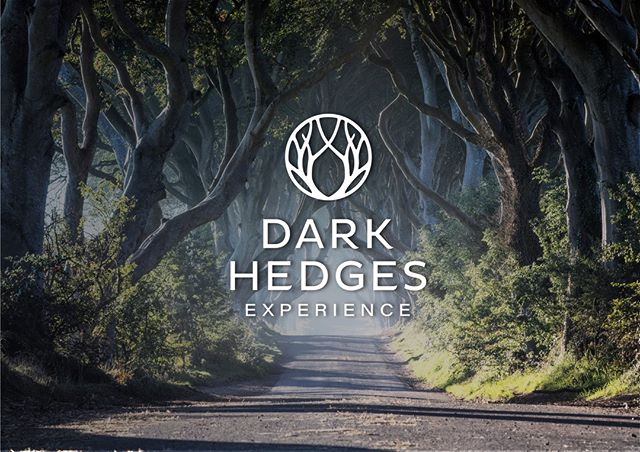 Step Inside the most incredible avenue planted 200 year old years ago on a guided tour.  Guided tours depart on the hour from 10am until 2pm on Weekdays, and 3pm on Weekends.  www.darkhedgesexperience.com  #amazingplaces