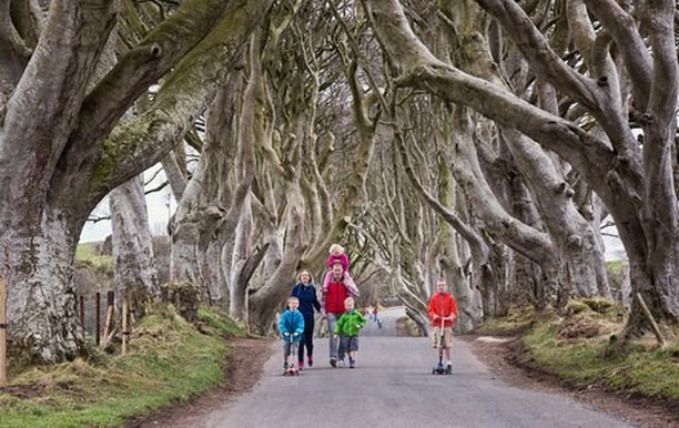 Bring your kids to the Dark Hedges Experience, our guides will  bring the stories alive in a fun and entertaining tour. Children under 5 are free. www.darkhedgesexperience.com