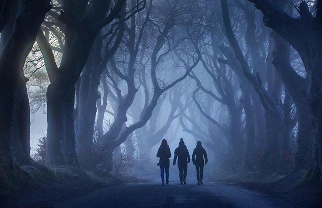Step Inside the Dark Hedges as the evening fades and join the Dark Hedges Experience storytellers on a truly unique and haunting guided tour. Hear the stories of the Grey Lady that is said to glide through the snarled branches at night. #darktourism #nighttours #darkhedges  Next tours on the 24th August and the 31st August. Contact us to find our more https://www.darkhedgesexperience.com/the-country-annex