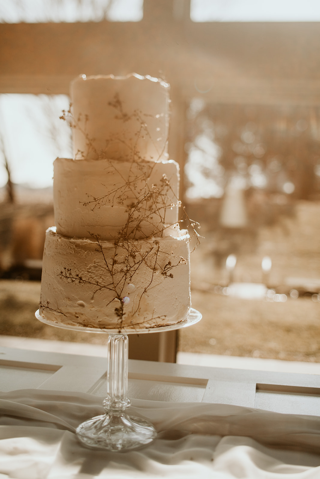 champaign_wedding_photographer_pear_tree_estate_wedding_wright_photographs0099.jpg