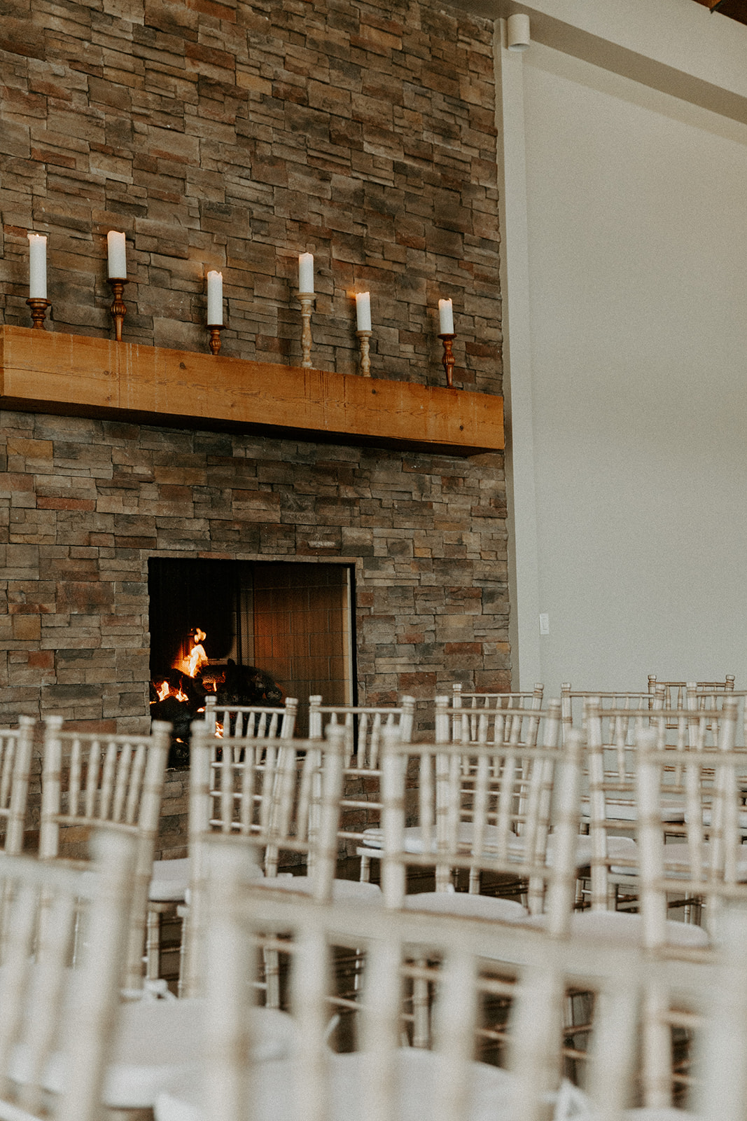 pear_tree_estate_wedding_photographer_champaign_chicago_illinois_midwest_wright_photographs_0120.jpg