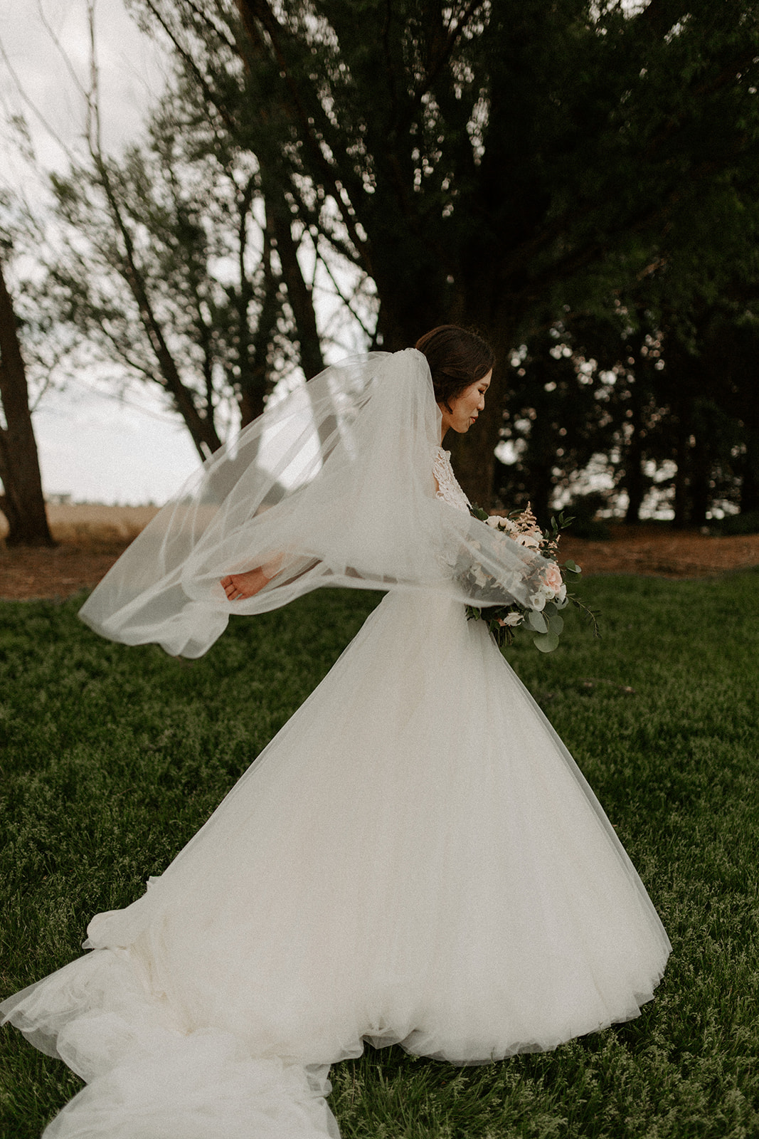pear_tree_estate_wedding_photographer_champaign_chicago_illinois_midwest_wright_photographs_0453.jpg