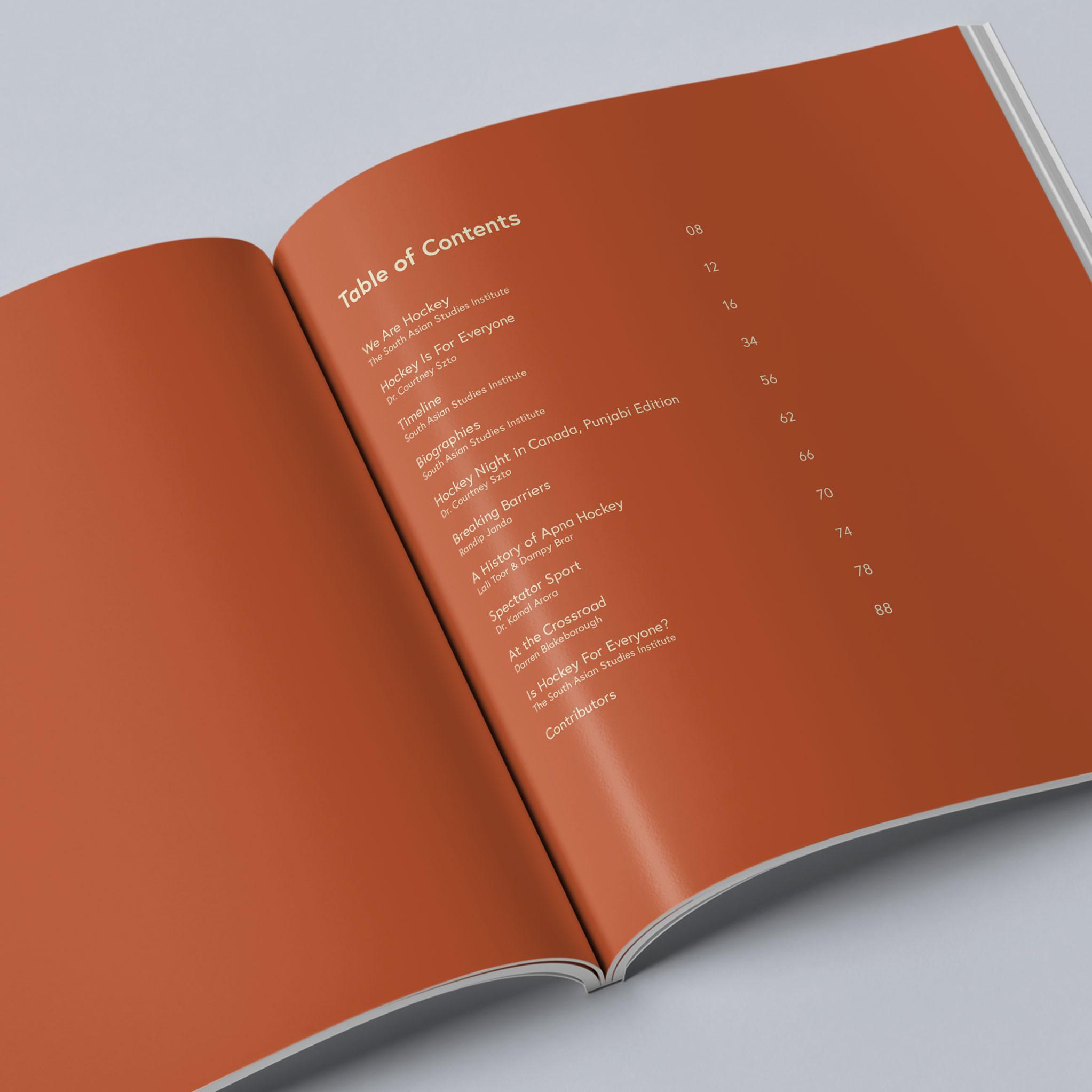 altdesignhouse-wearehockey-catalog07.jpg