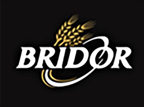 Logo Bridor.jpg