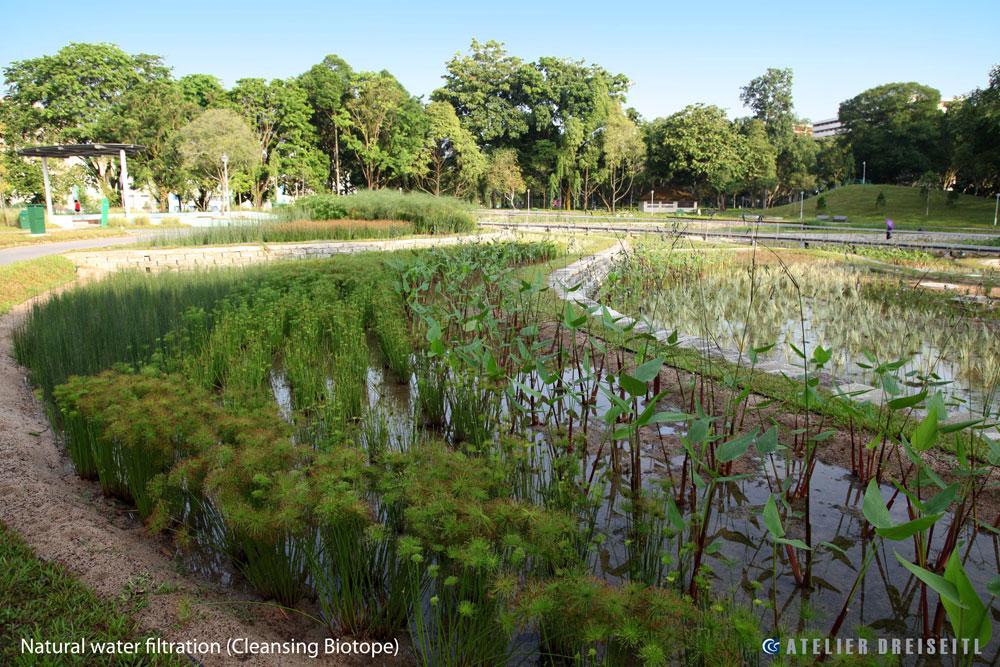 Bishan-Ang Mo Kio Park , Singapore  ©atelierdreiseitl
