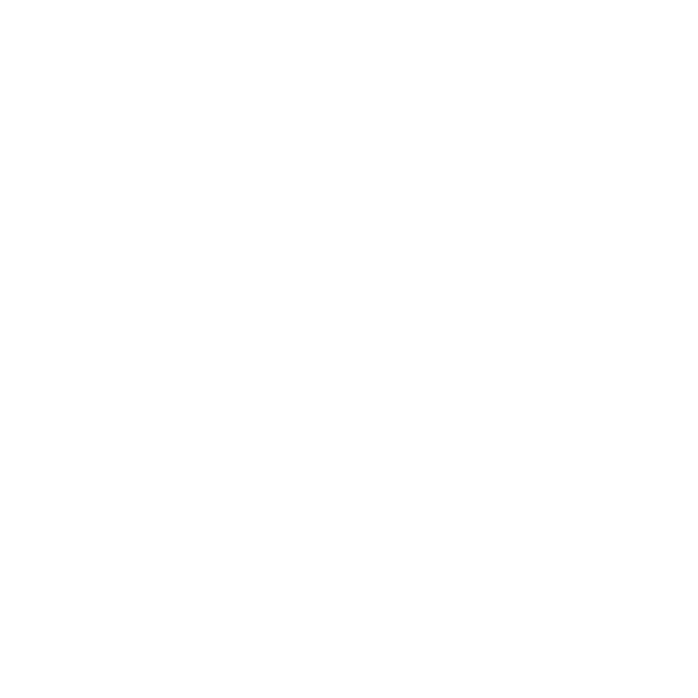 RM-icon-Reversed.png