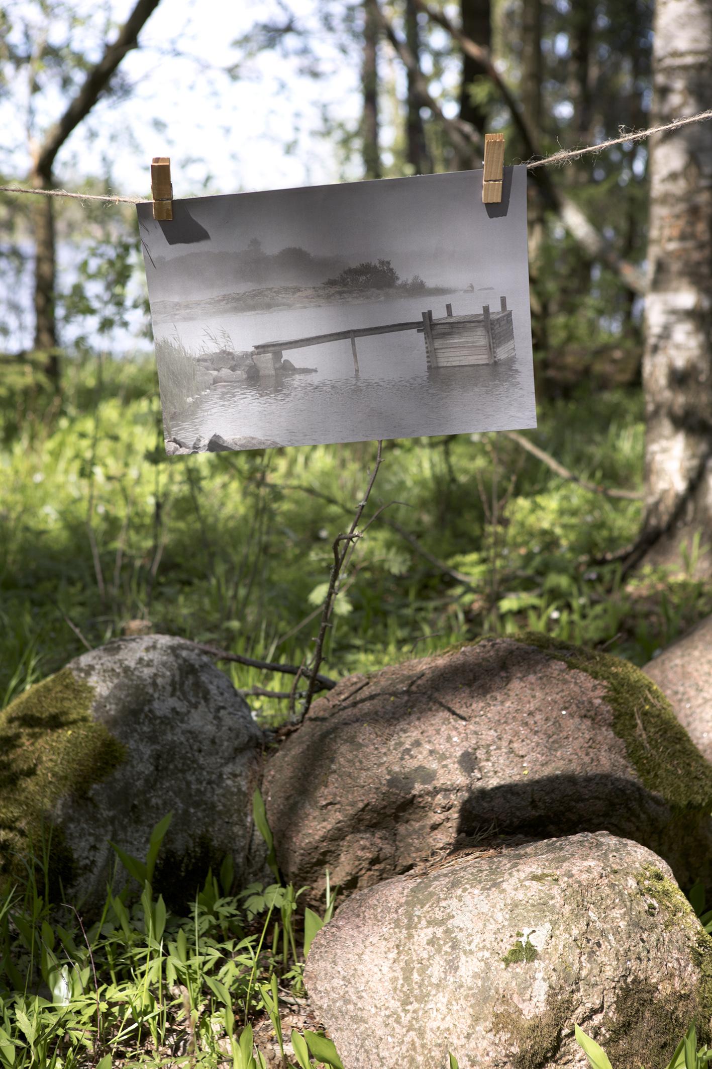 Sumu poster, Arto Timonen
