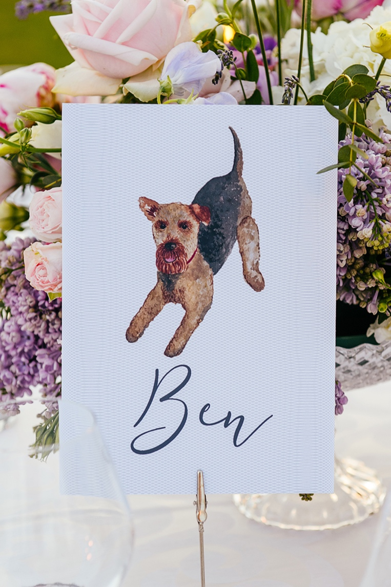 Louise Richardson Dog Table Signs.jpg
