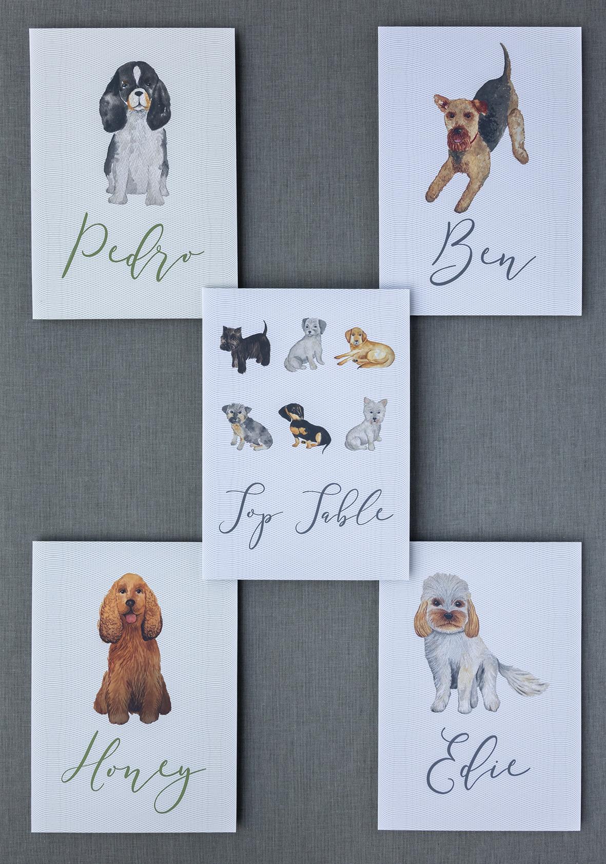 Louise Richardson Dog Signs Ephrussi.jpg