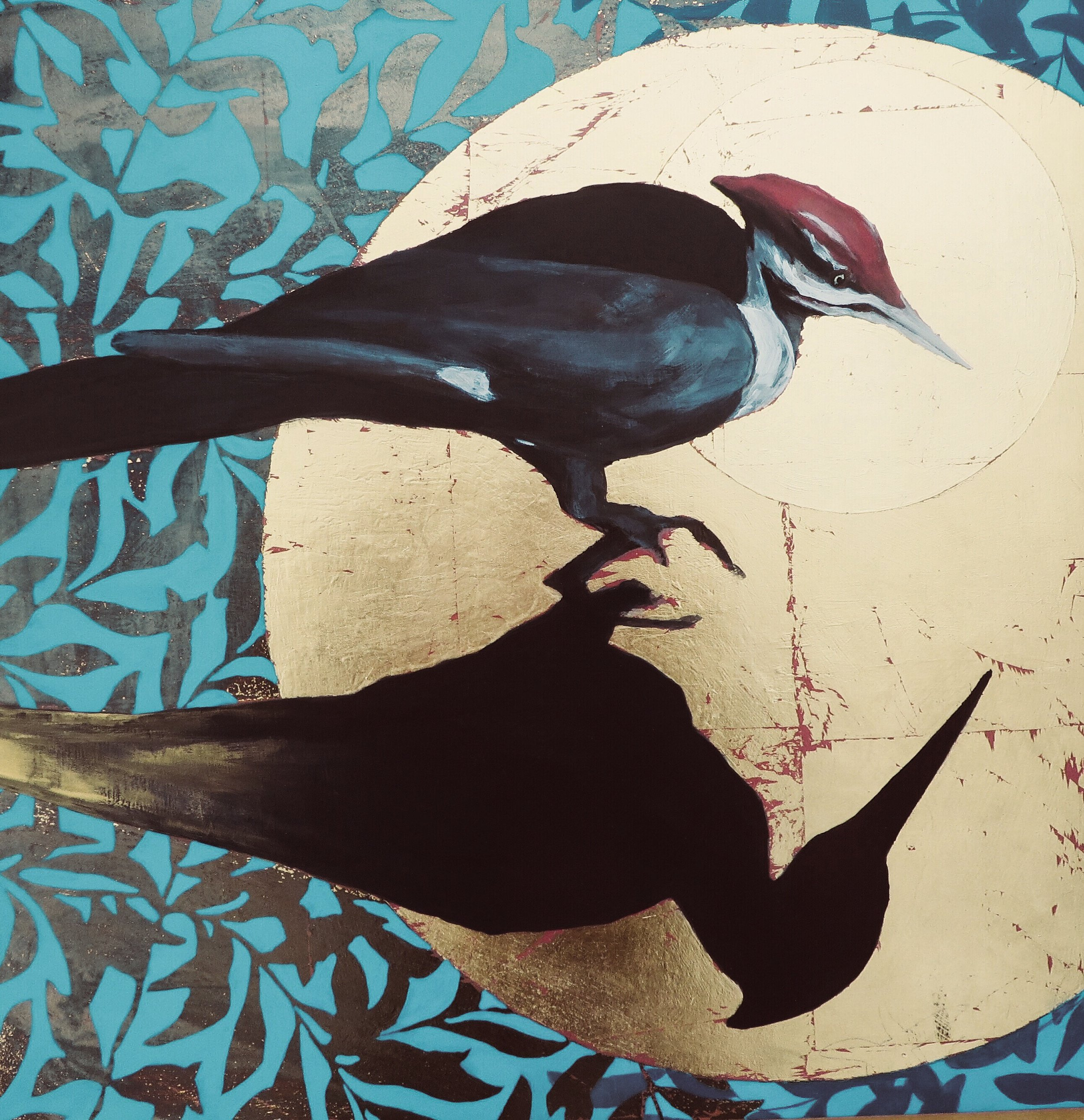Pileated - Reflections