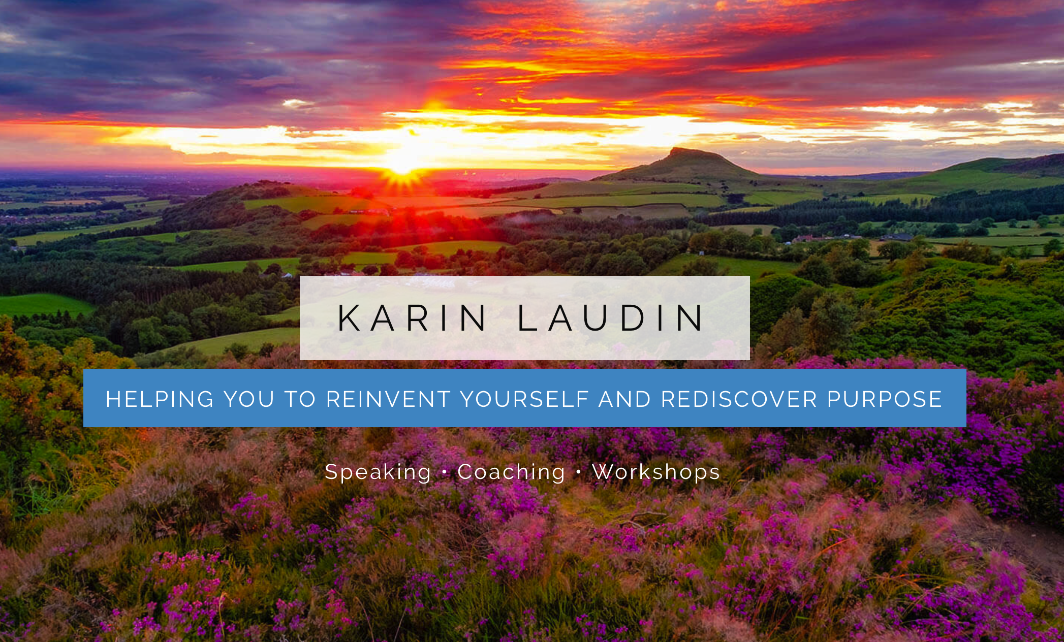 Karin Laudin Redcar and Cleveland Business Network.png