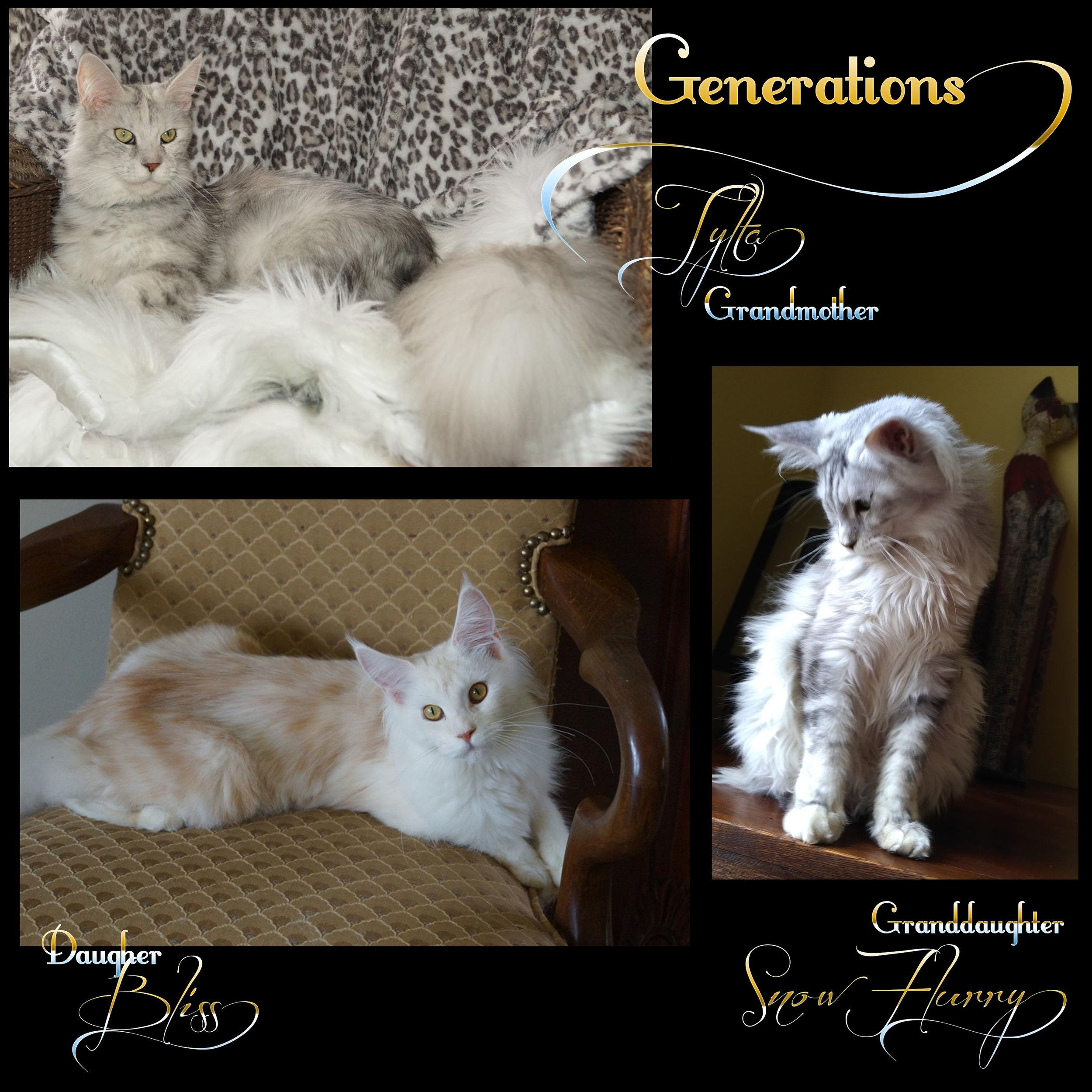 GenerationsTyltaBlissSnowFlurry.jpg
