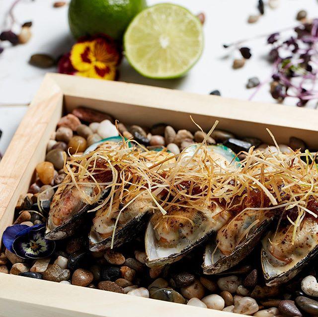 Tonight's Special - Mussels #feaston  #hiltonhotels #tulipottawadowntown #ottawafoodies #ottfoodies #ottawadowntown #mussels #local #myottawa #sharables #ottawarestaurants