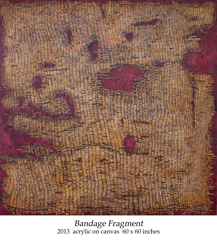 Bandage Fragment 2013 acrylic on canvas 60 x 60 inches.jpg