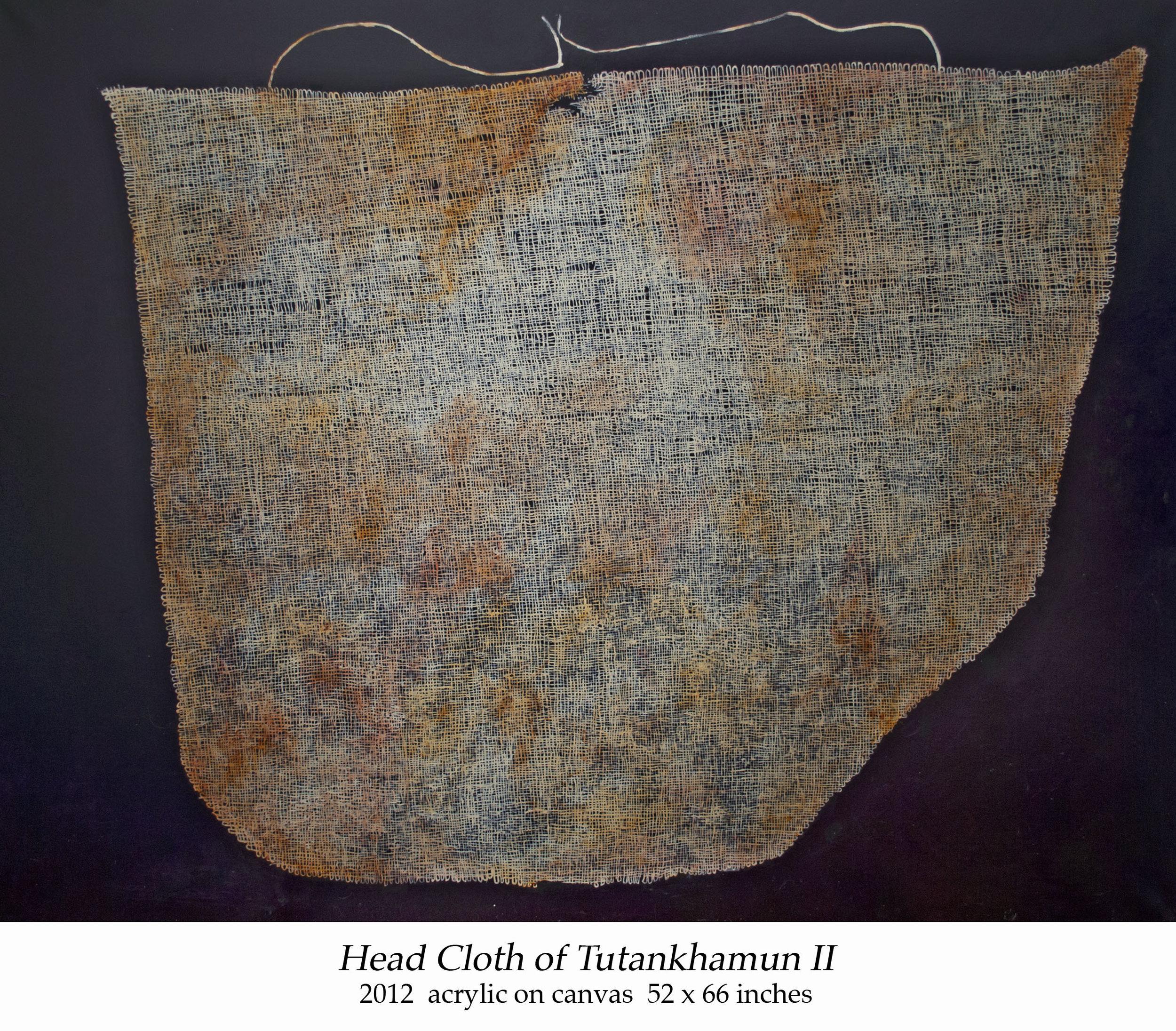 Head Cloth of Tutankhamun II 2012 acrylic on canvas 52 x 66 inches.jpg