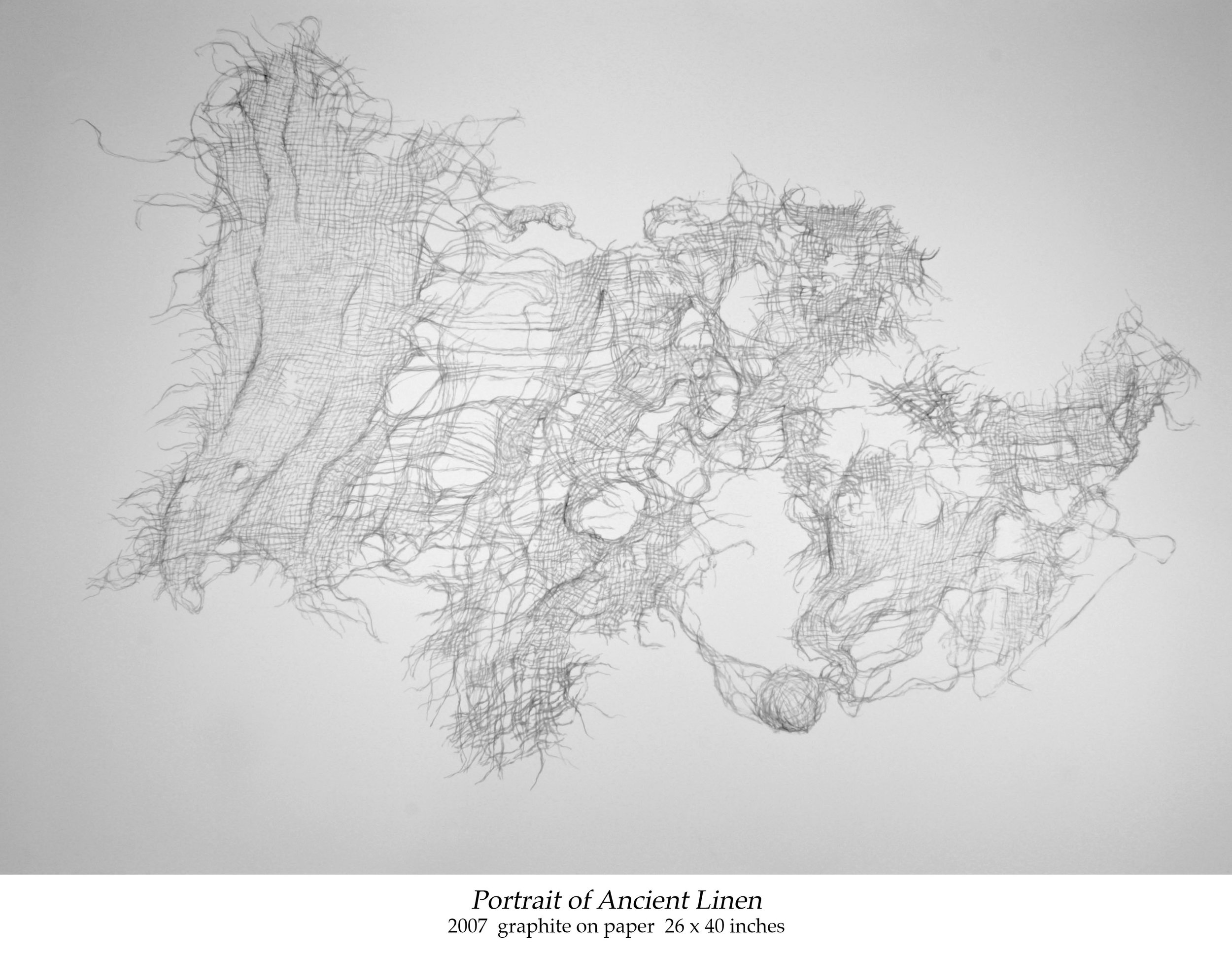 Portrait of Ancient Linen_2007_graphite on paper_26 x 40 inches_labeled.jpg