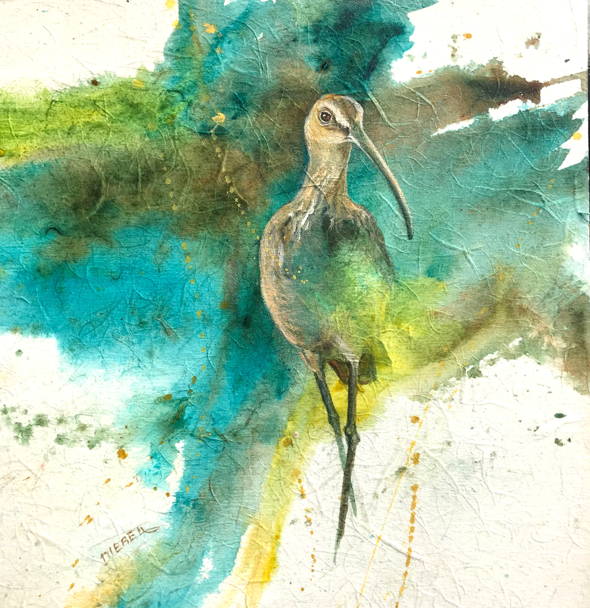 Diebel-Curlew-acrylic-on-rice-paper.jpg