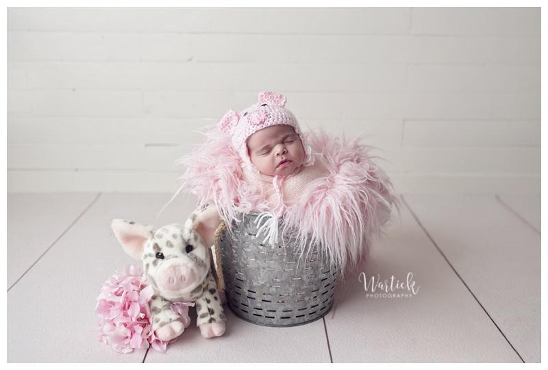 dubuque_newborn_photography_0704.jpg
