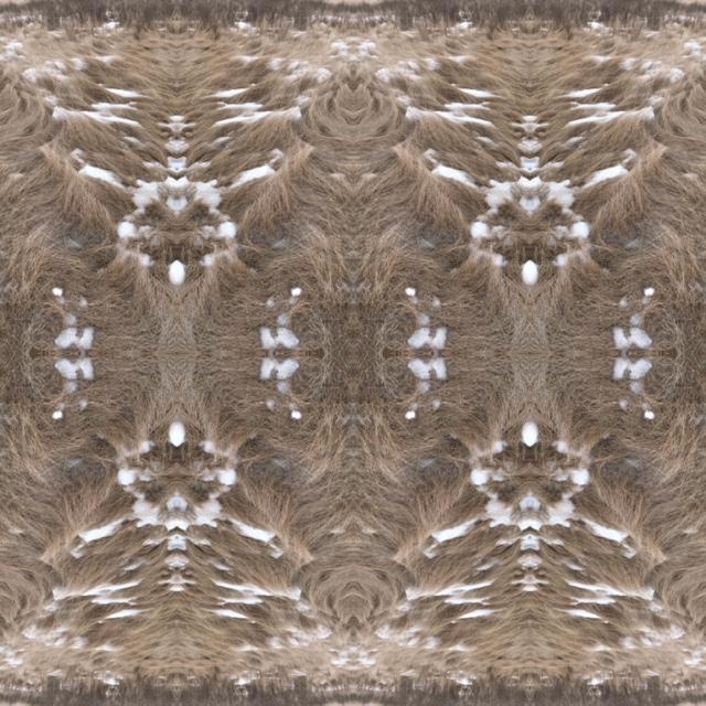 Katherine Boyer   Terri Fidelak,  Between the Grasses , 2018. Digital pattern, dimensions variable. Photo Katherine Boyer, Terri Fidelak