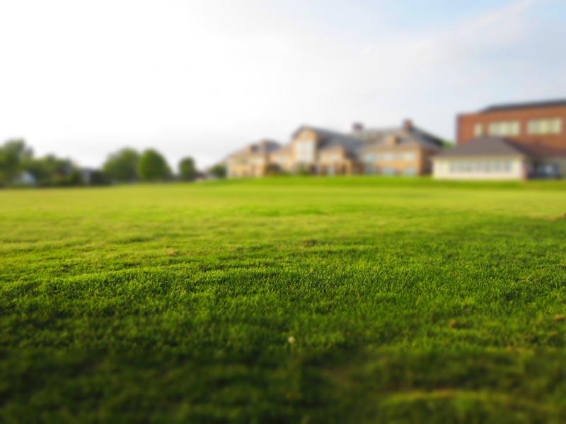 La alcaldía de Denison advierte a propietarios e inquilinos que de no cumplir las regulaciones del corte de grama durante la primavera y el verano, serias multas serán impuestas.